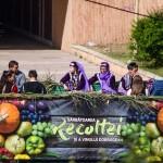 Sărbătoarea Recoltei și a Vinului Dobrogean – fotoreportaj
